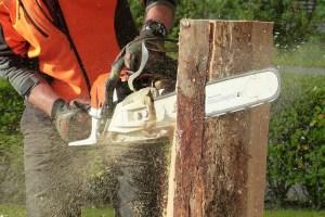 chainsaw cutting down a wood log