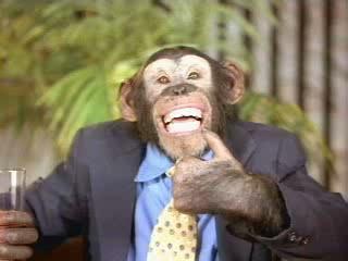 Monkey critic