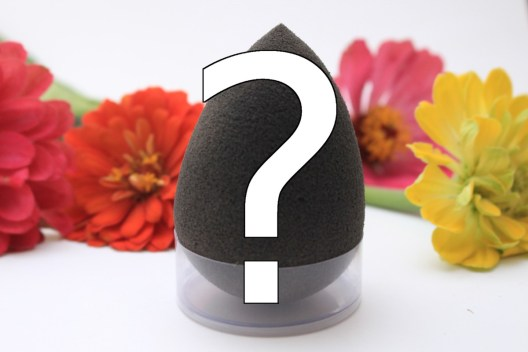 Is the Beauty Blender really worth the Hype?
