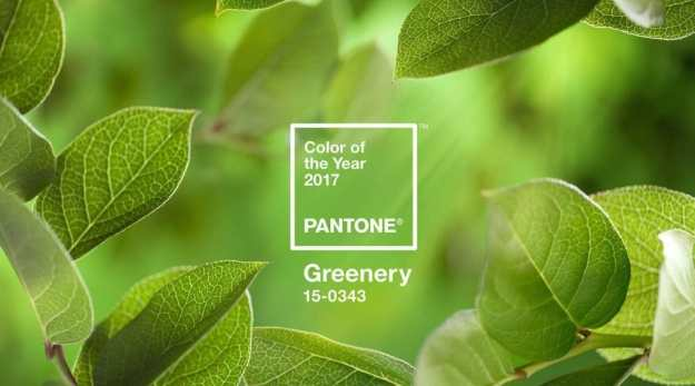 2017 Pantone Color of the Year