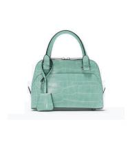 Zara Croc Mini City Bag