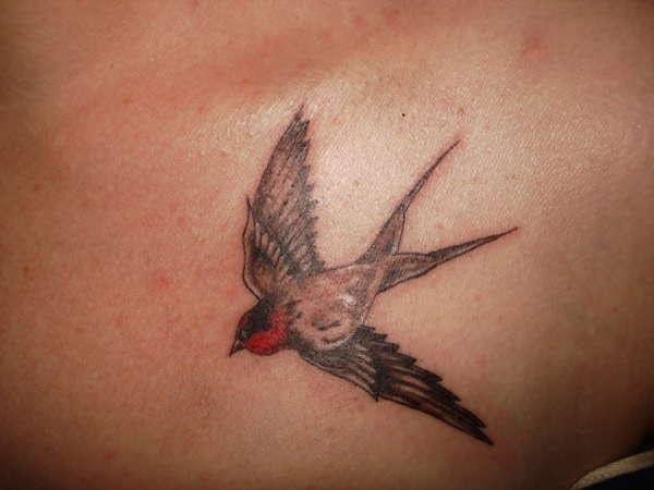 swallow-tattoo