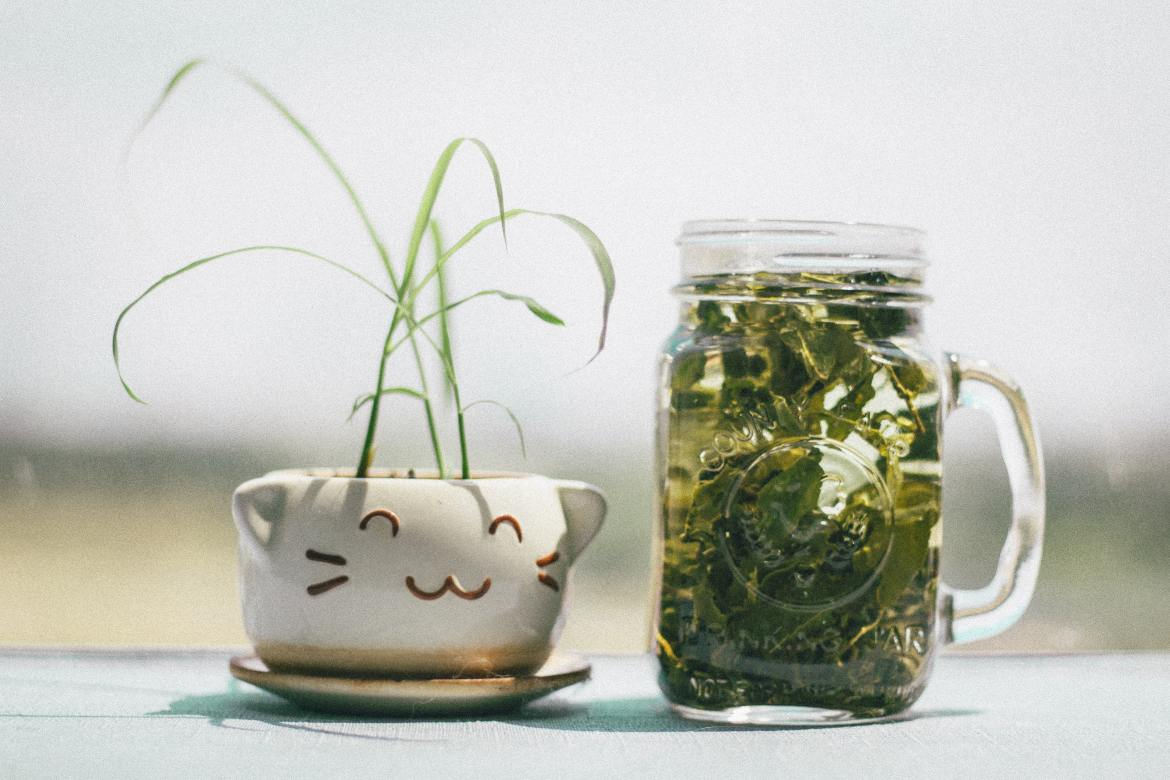 Natural Acne Remedies For Glowing Skin Green Tea
