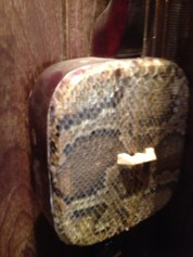 Wait, snake skin instrument?