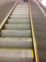 Grateful, so grateful for escalators.