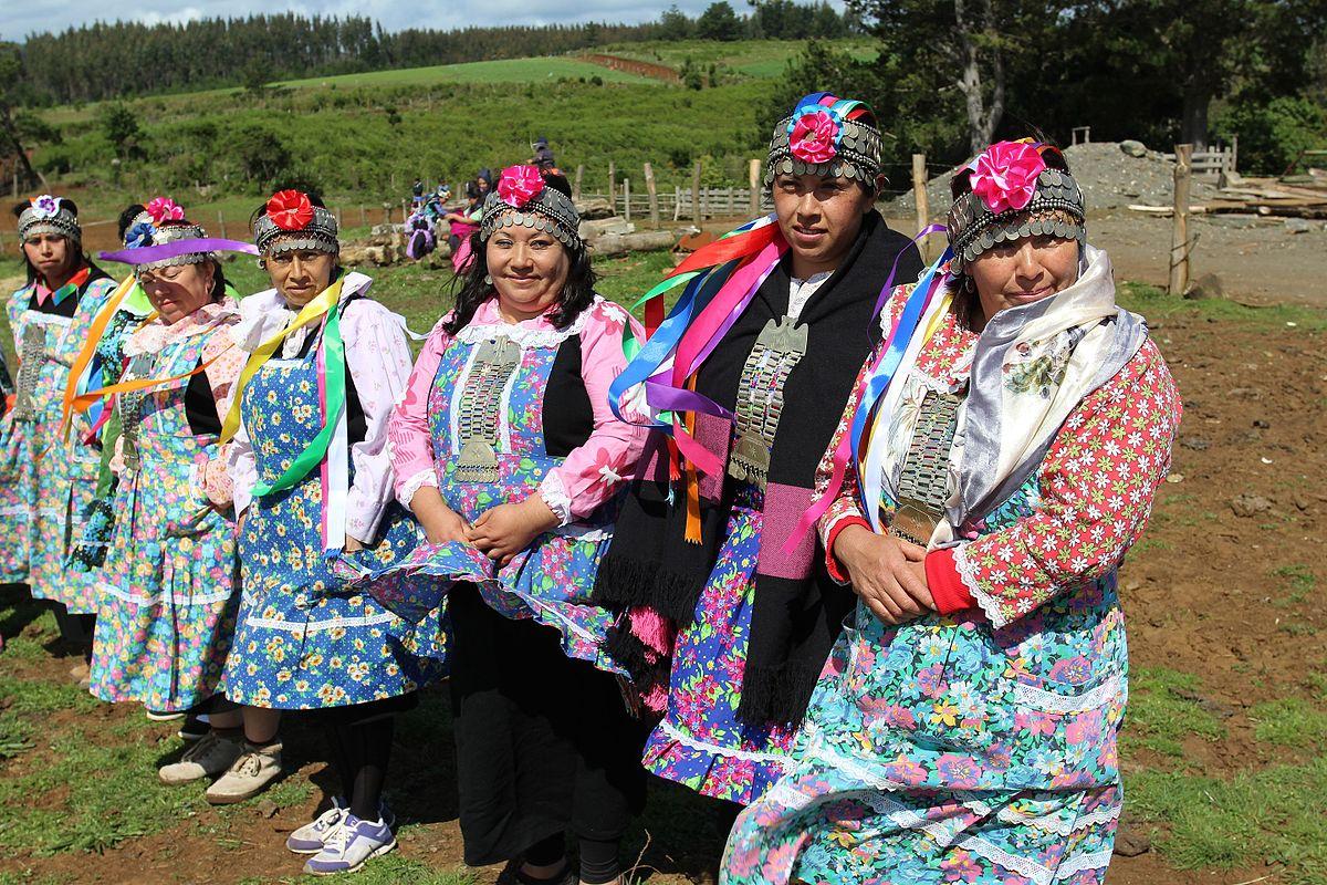 https://i0.wp.com/thesubmarine.it/wp-content/uploads/2017/03/1200px-Mujeres_mapuches_en_la_entrega_terreno_a_Comunidad_Mapuche_Lorenzo_Quintrileo_de_Tirúa.jpg?fit=1200%2C800&ssl=1