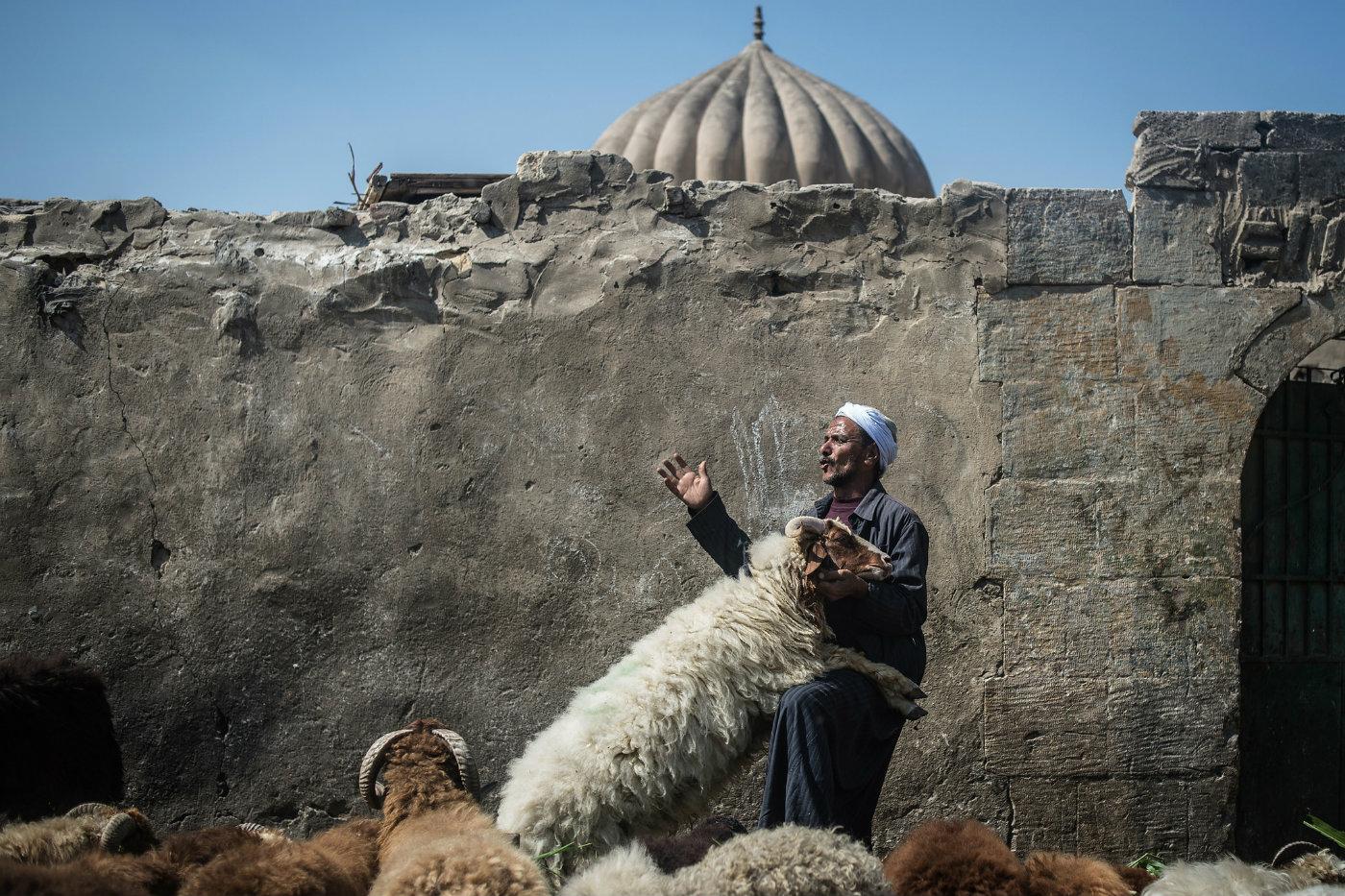 Chi sono i vegani musulmani convinti che l'industria della carne sia contraria all'Islam