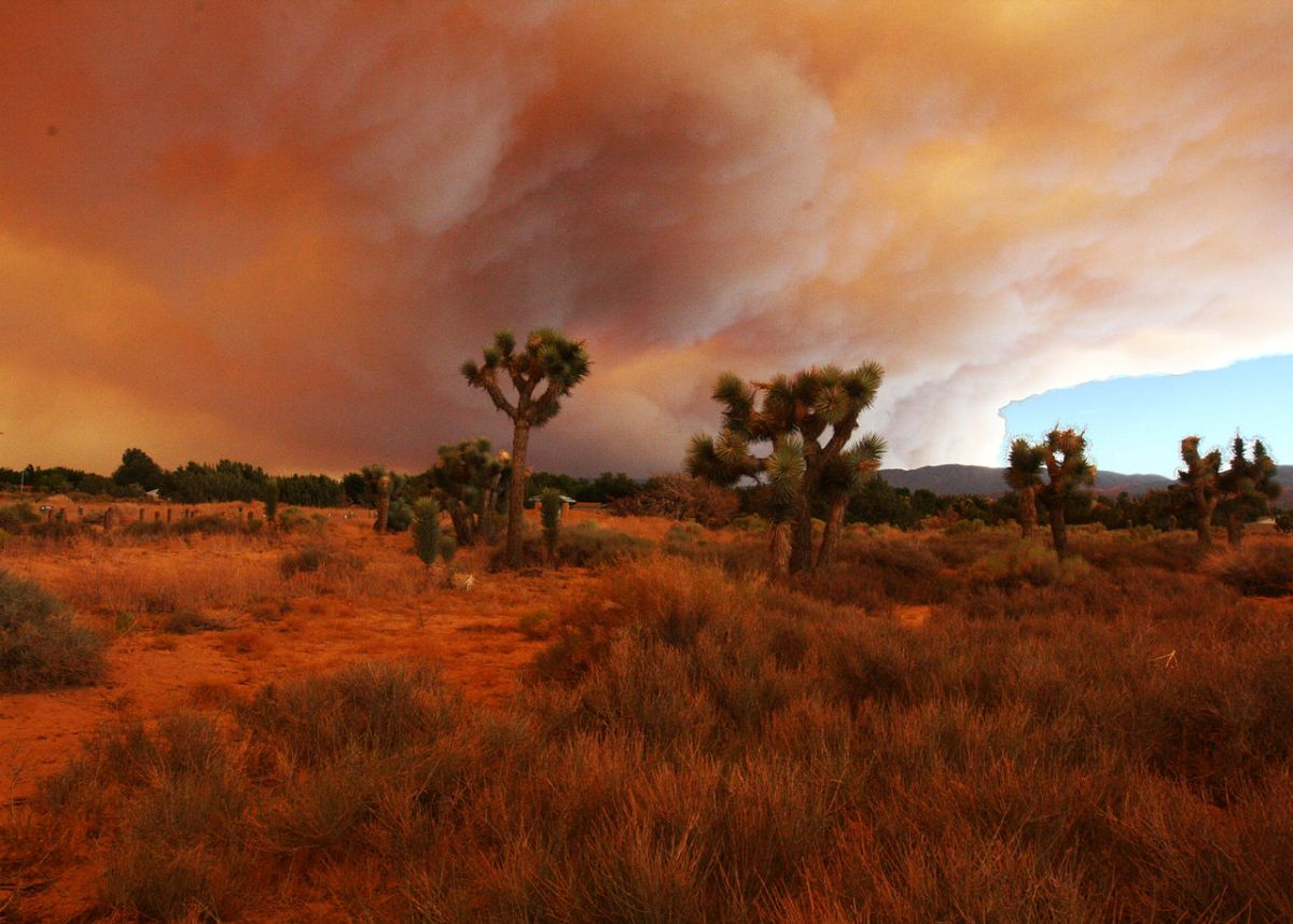 https://i0.wp.com/thesubmarine.it/wp-content/uploads/2018/11/1280px-Southern_California_Fires_3869161421.jpg?fit=1200%2C858&ssl=1