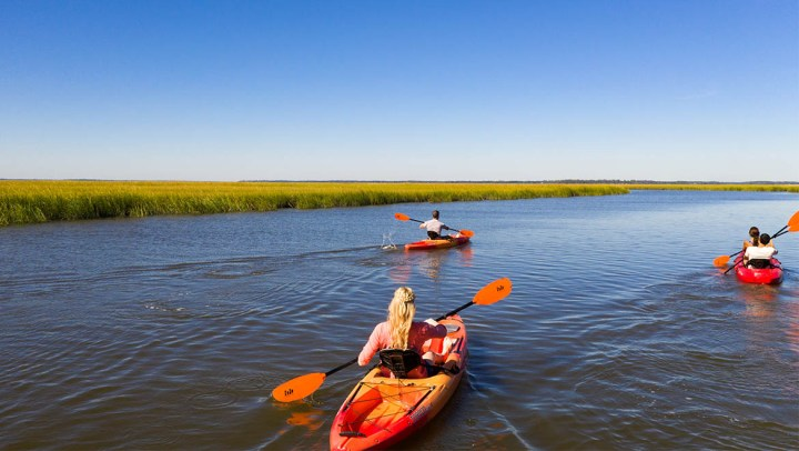 Amelia Island Adventures: Best Places to Kayak, Hike & Tour