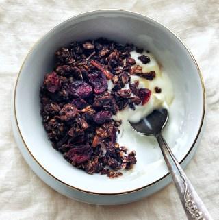 Dark Chocolate Granola with Cranberries