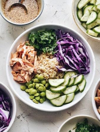 asian rice bowl, close-up