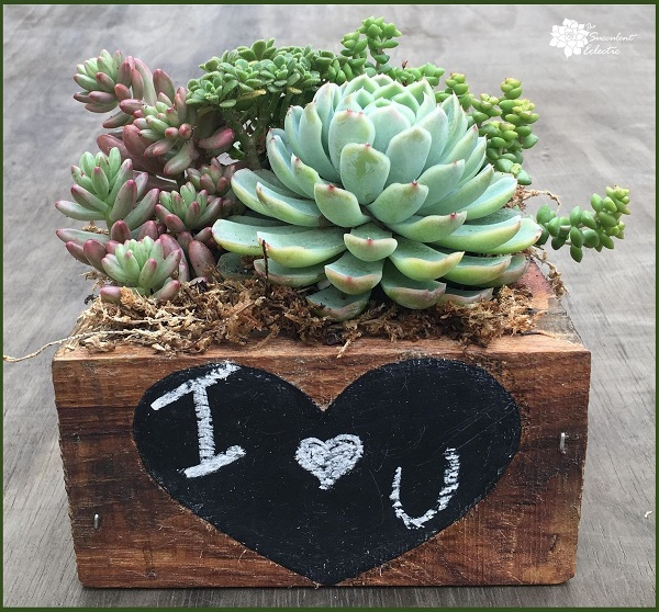 reclaimed wood succulent planter with chalkboard heart