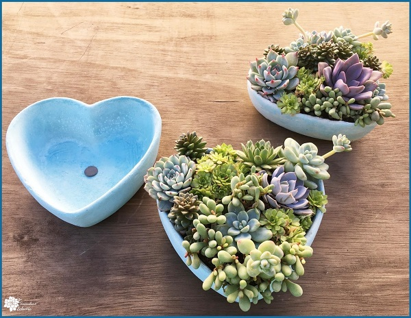 blue cement bowl succulent heart shaped bowl for sale
