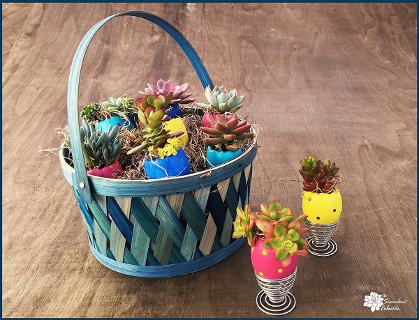Easter basket with DIY succulent Easter eggs