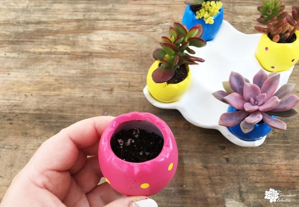 planting your decorated egg planter
