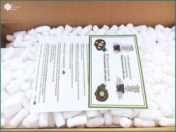 unboxing Mountain Crest Gardens - eco-friendly packaging