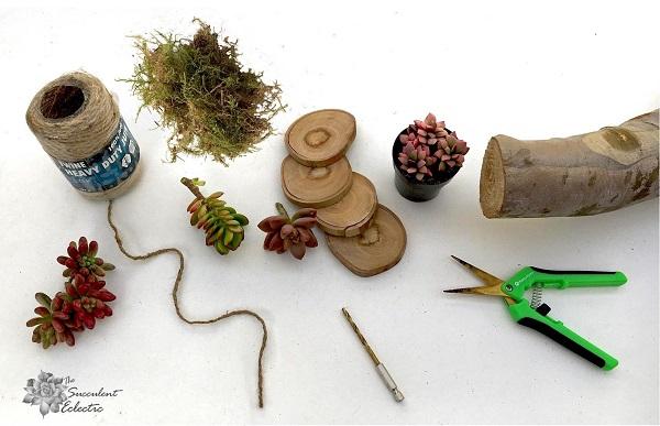Supplies for DIY wood slice Christmas ornament