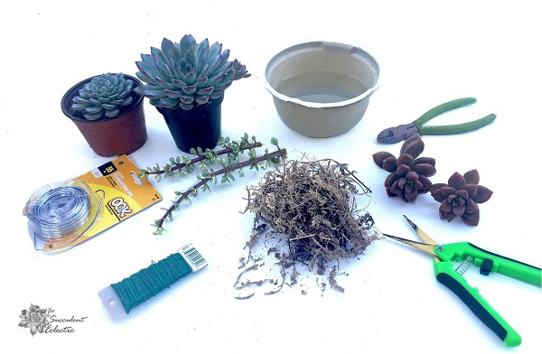 supplies for making succulent Christmas ornaments