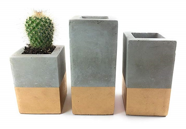 trio of concrete planters makes a great succulent gift