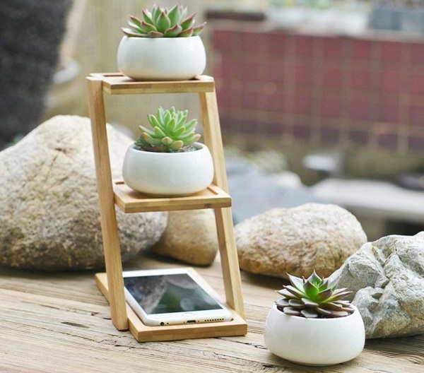 3 step shelf with 3 white ceramic succulent bowls