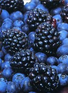 blueberries and blackberry fruit salad