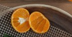 oranges via boss fight free images