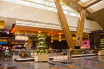 Viva Las Vegas Aria Resort And Casino Baby