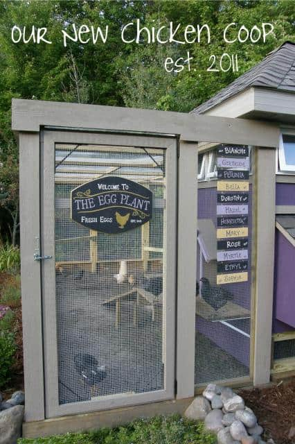 Cute Homemade Chicken Coop 10 Pretty And Functional Chicken Coops That Will Inspire