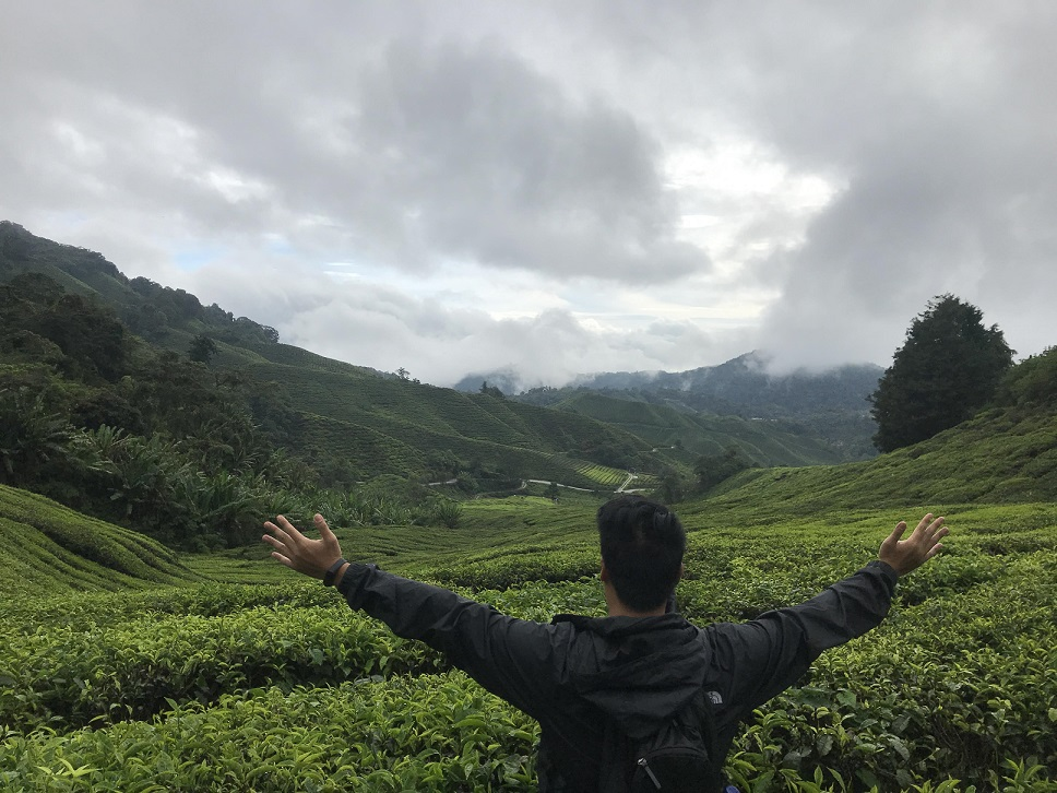 Cameron Highlands How to Spend Less Than $30 Per Day in Malaysia