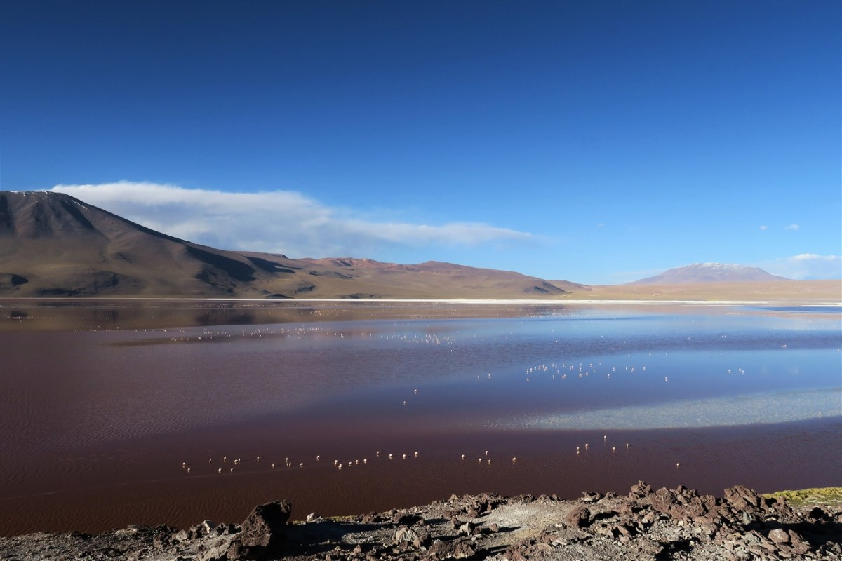 Laguna-Colorada-Budget-Breakdown-The-Cost-of-Travelling-Bolivia