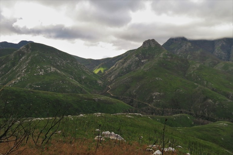 Outeniqua Pass The Budget Traveller's Guide to the Garden Route Road Trip