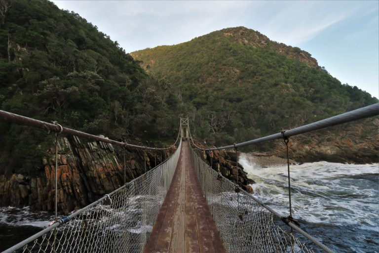 Tsitsikamma National Park Suspension Bridge The Budget Traveller's Guide to the Garden Route Road Trip