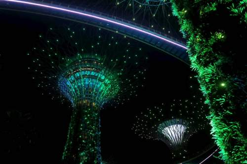 Garden Rhapsody Gardens by the Bay Singapore