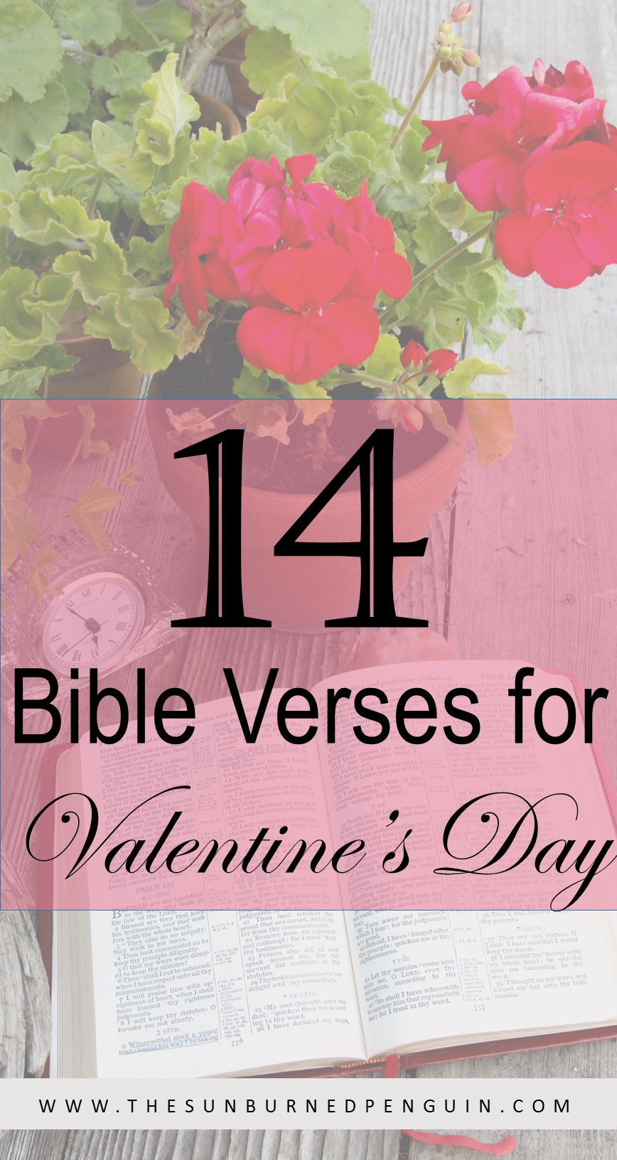 14 Bible Verses for Valentine's Day