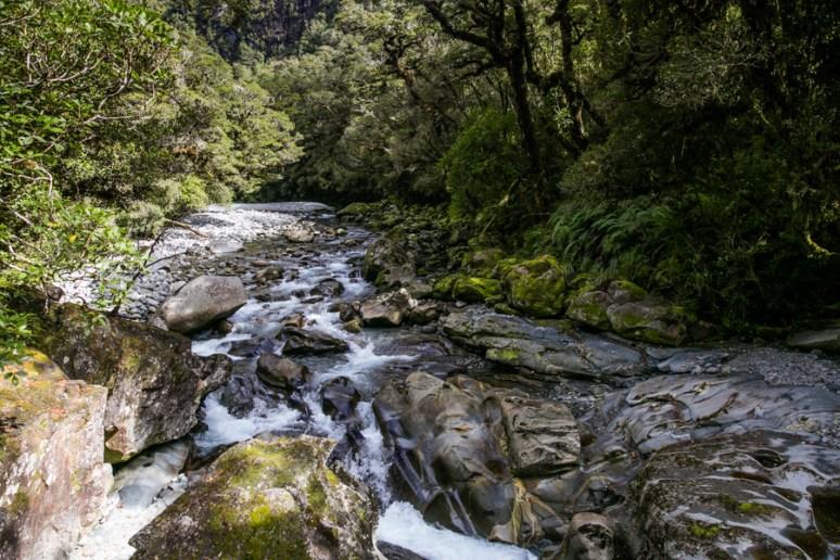 Milford Sound-11