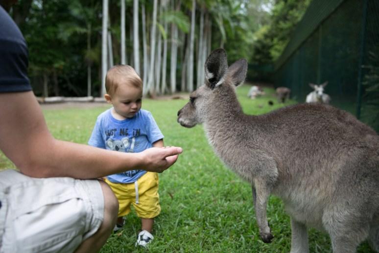 Australia Zoo-27