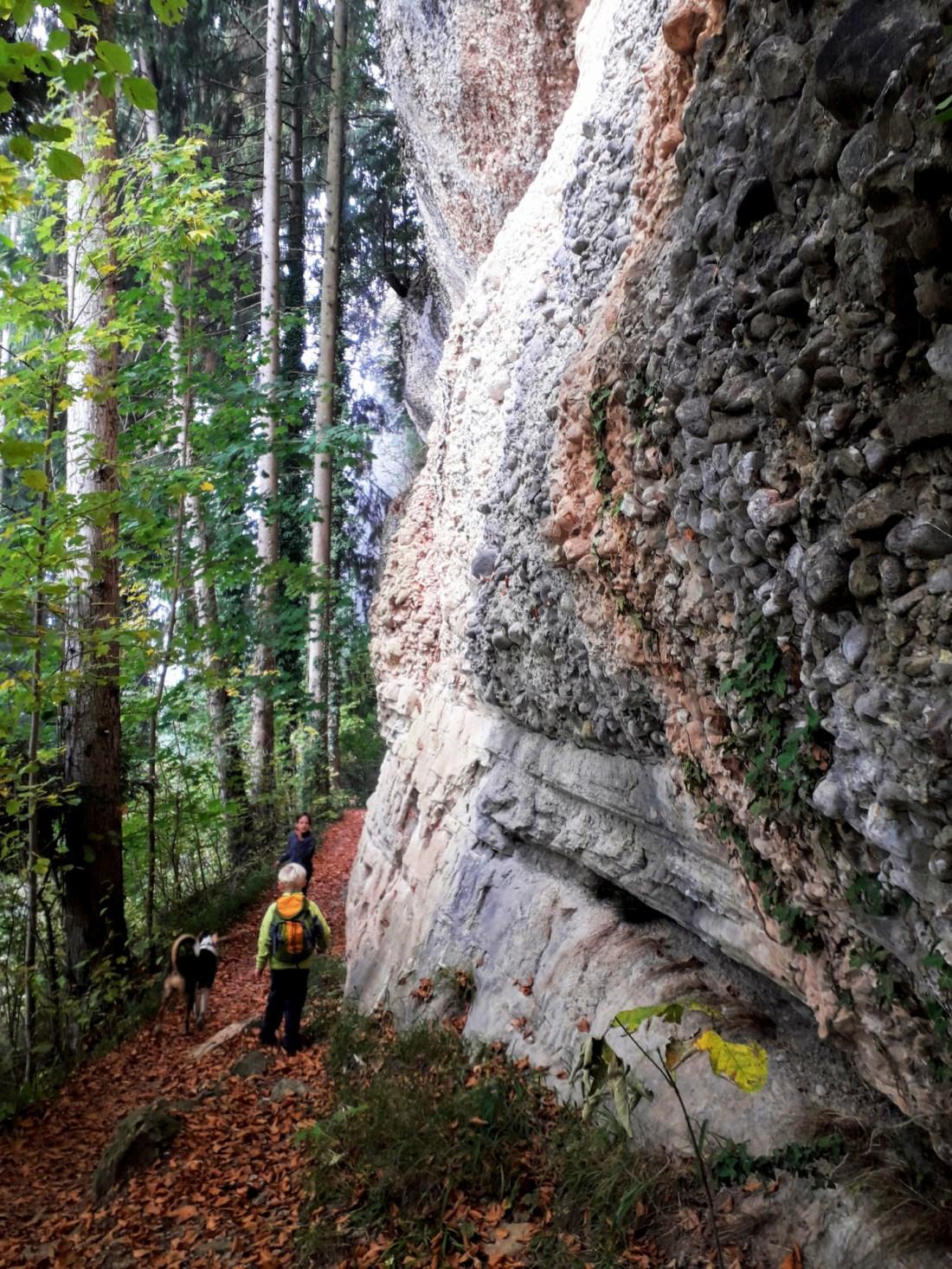 Känzeleweg, Gebhardsberg, Fluh bei Bregenz, thesunnysideofkids, wandern in vorarlberg, wandern mit kindern in vorarlberg