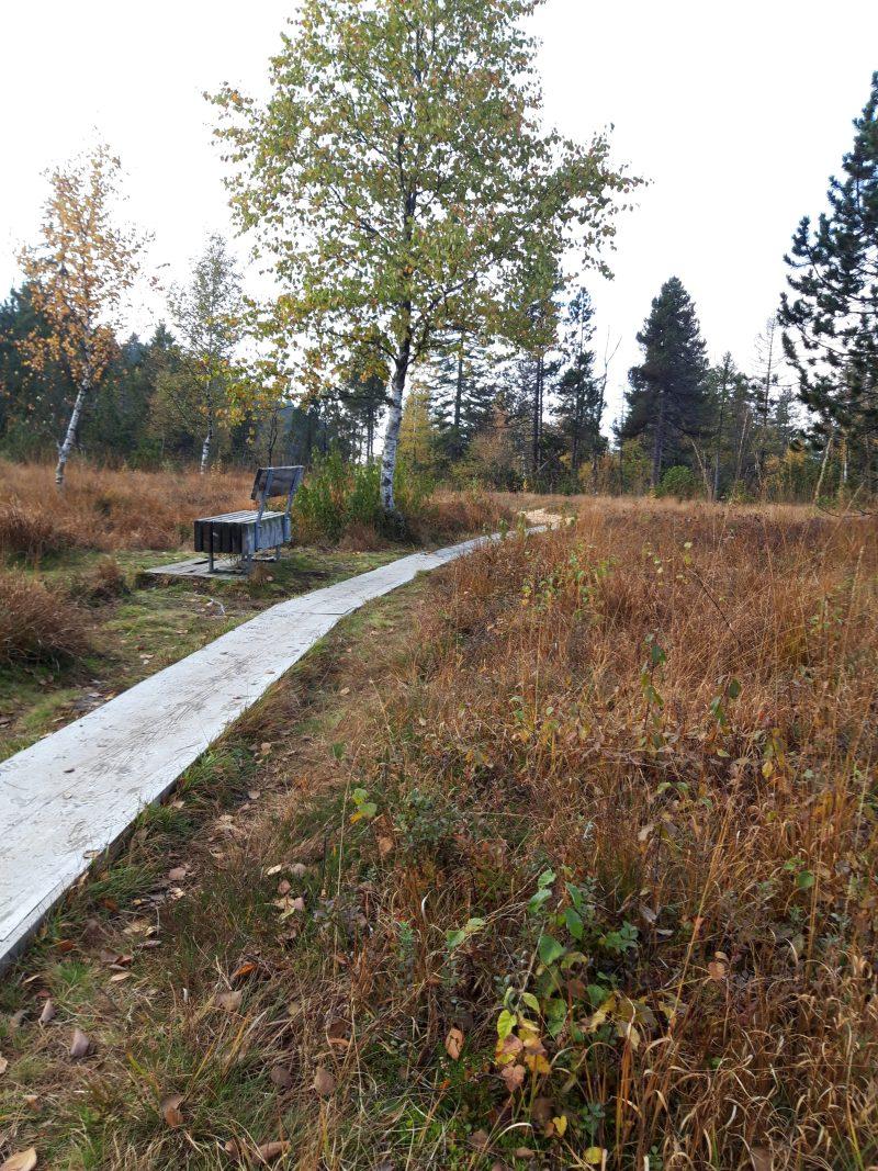 Wildrosenmoor Sulzberg
