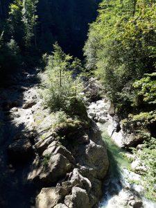 Drahtsteg Lingenau Großdorf