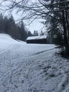 rodeln und winterwandern bödele