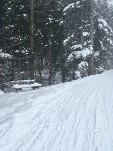 winterwanderweg schwarzenberg bödele