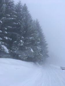 winterwanderweg lustenauerhütte