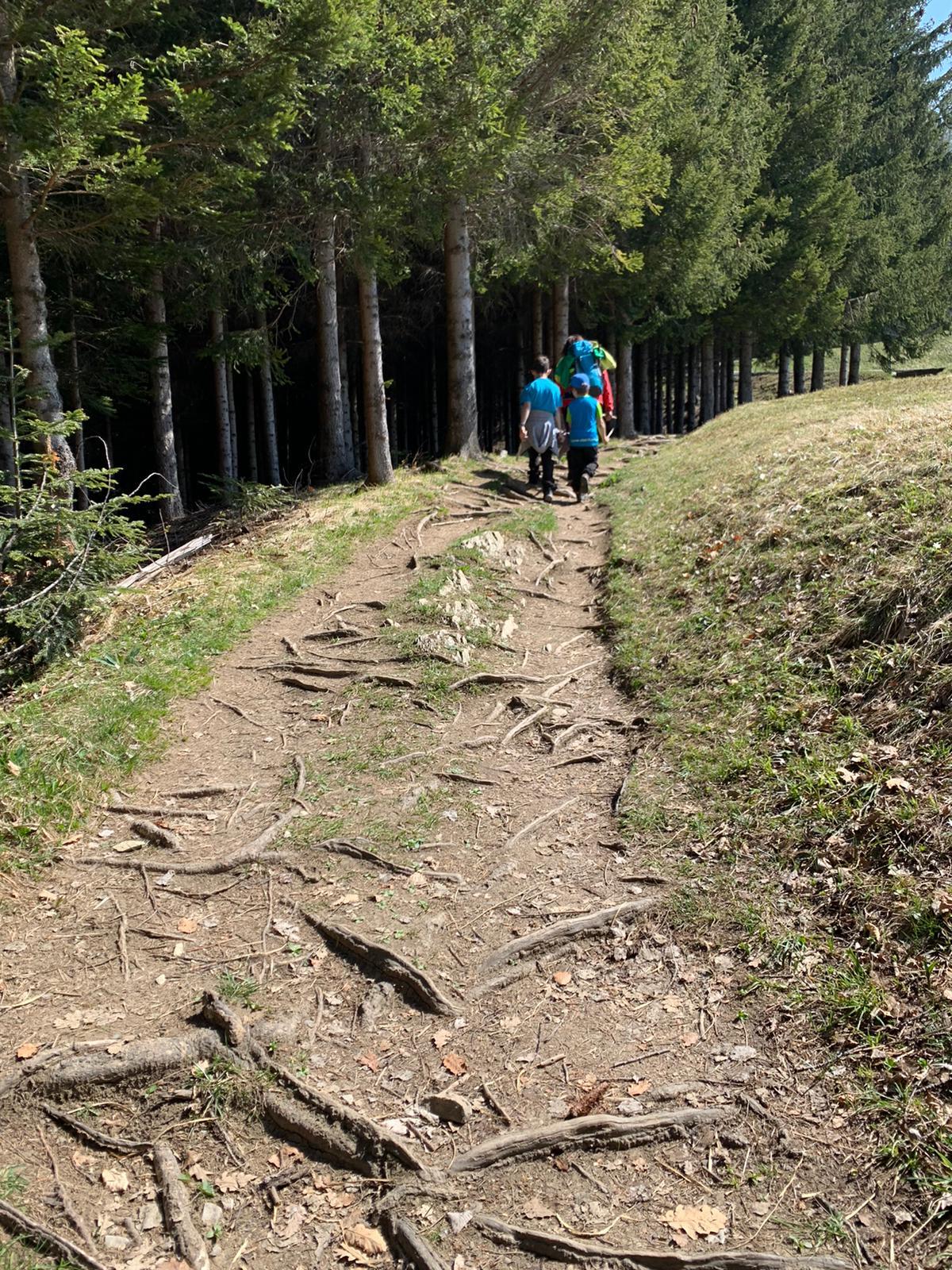 Alpe Maiensäss, Fraxern