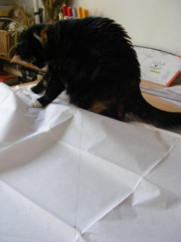 At the tracing stage, the tissue was an exciting foe.