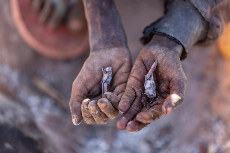 """Hunger reaches extreme levels in Madagascar's """"invisible crisis"""""""
