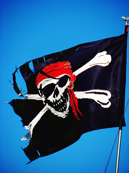 Photo:  Pirate Flag at Kings Plaza Marina