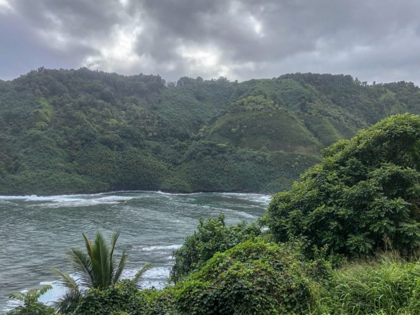 Coastal Maui View