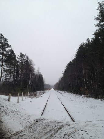 Snowy tracks to nowhere