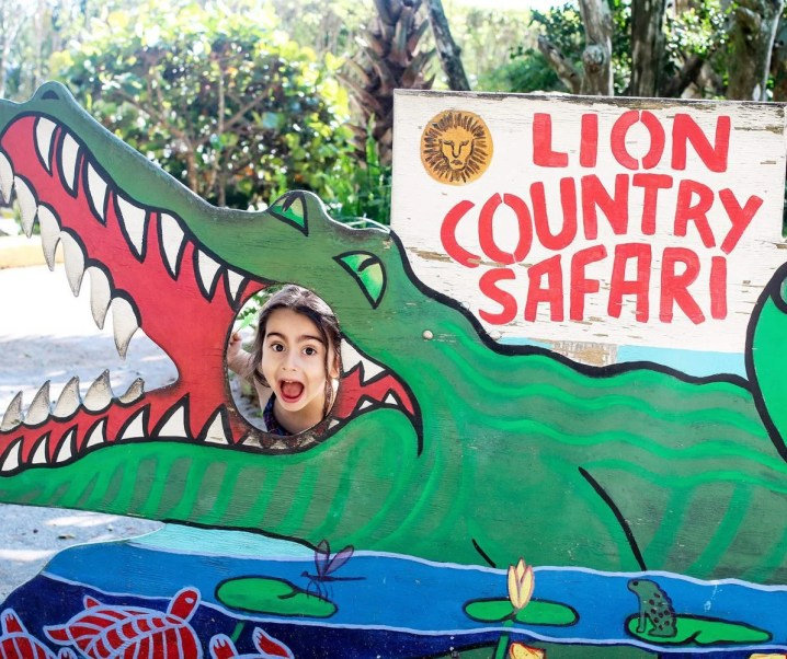 THINGS TO DO IN FLORIDA {SERIES} – Lion Country Safari