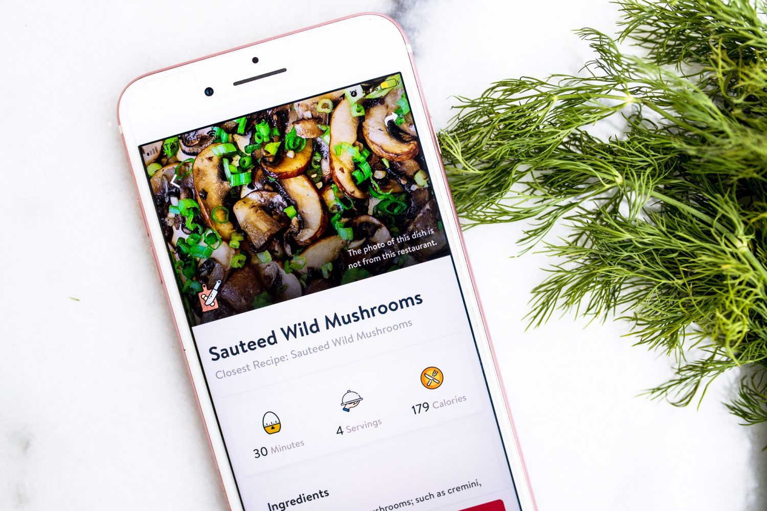 howudish, healthy eating, prodishstyles, dish like a pro, fitness, athletes, healthy recipes, restaurant options, nutritional value, favorite athletes diet, low carb, high fiber, vegetarian, vegan, app, healthy eating app, apps for diets, diet apps